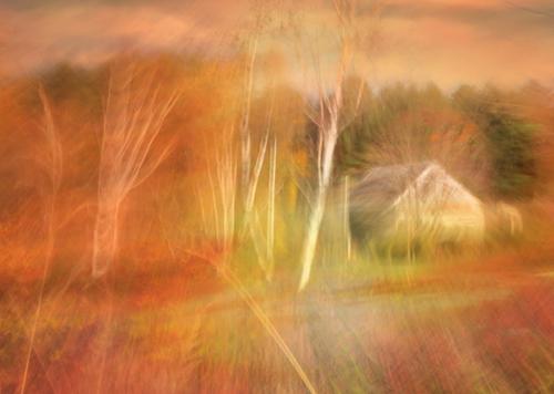 Thanksgiving by Ramona du Houx