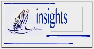 insights logo2